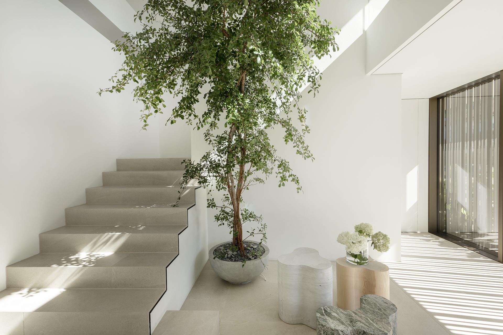 house d | germany | fuchswacker architects