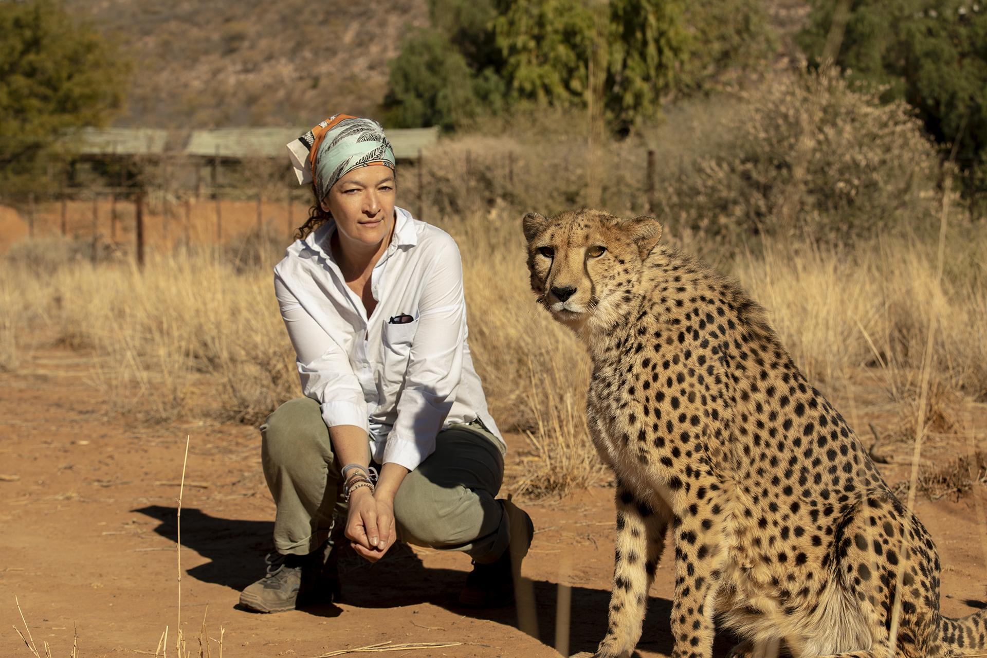 wildlife | namibia