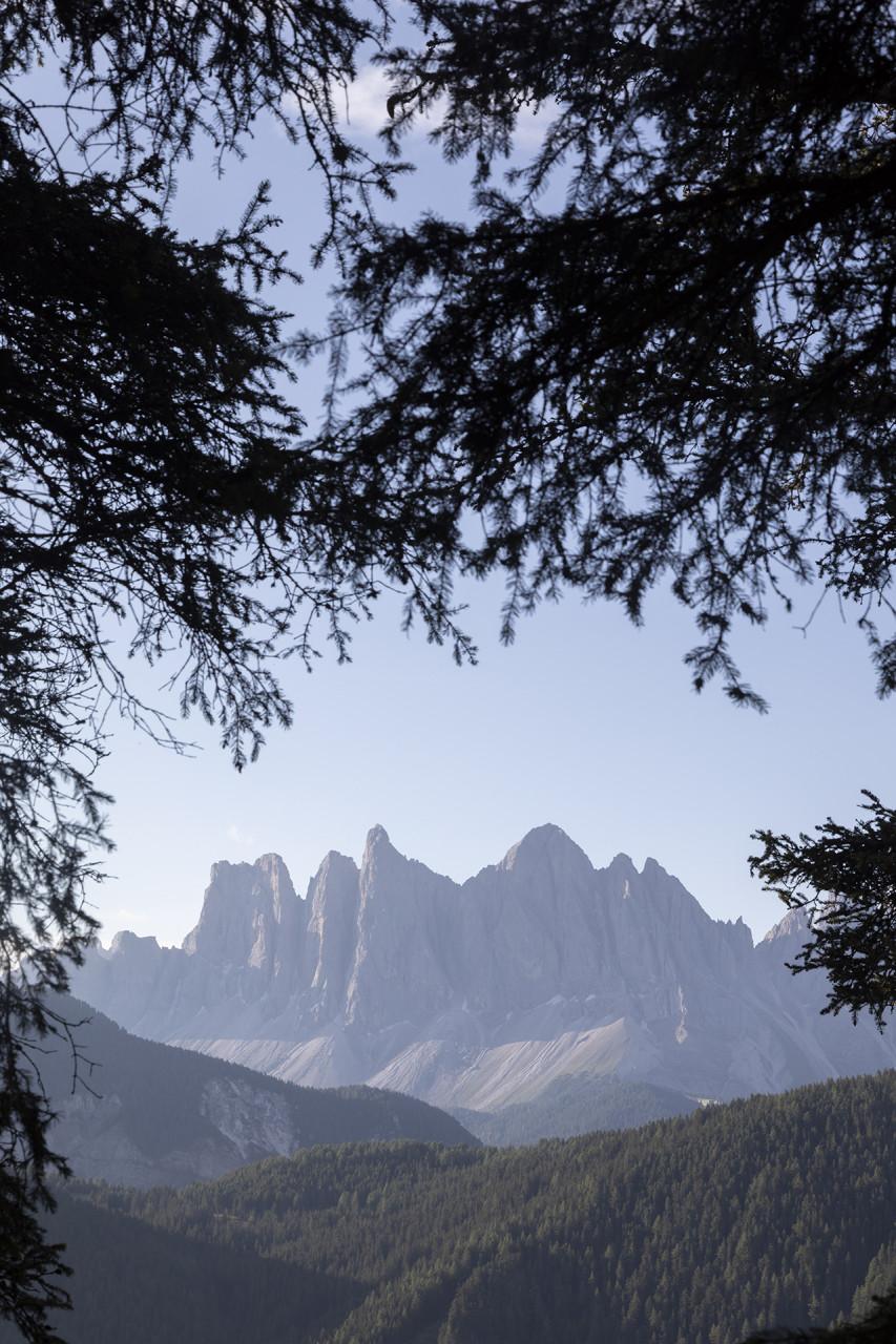 forestis | dolomites | asaggio architects bressanone